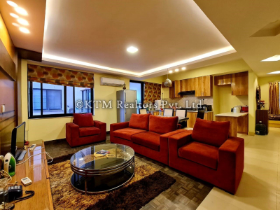 Apartment for sale in Panipokhari